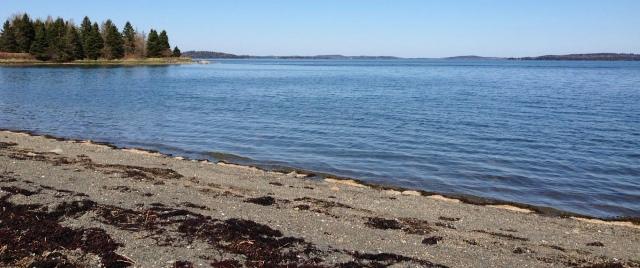 Leighton Point Beach